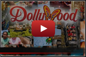 vbanner-dollywood